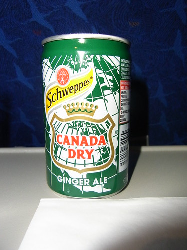 Ginger Ale For Dogs Eating Grass