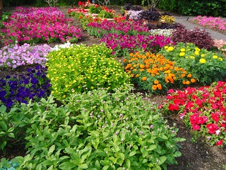 Kemper Flower Trial Garden | by Missouri Botanical Garden