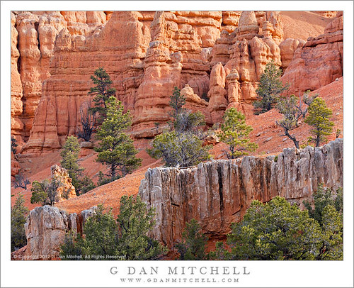 Trees and Cliffs, Red Rock Canyon | by G Dan Mitchell
