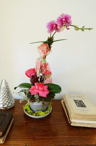 Orchid Arrangement | by ralph and jenny