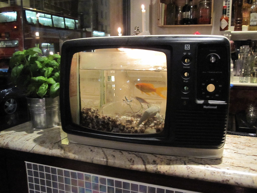 Fish tank for your tv -  Fish Tank Tv In A London Pub By Sergejf