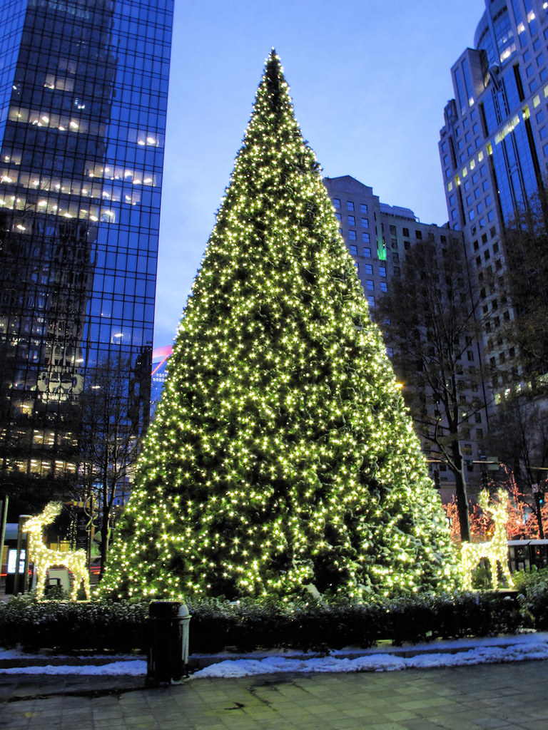 charlotte christmas tree 2010 by jbtuohy