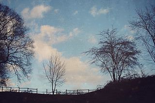patches of blue sky | by tidytipsy