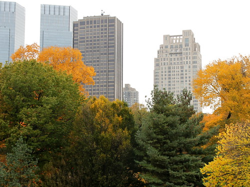autumn in new york (6) | by kexi