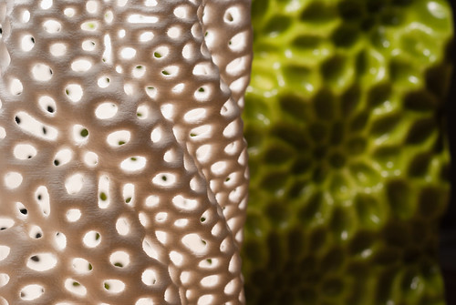 Nervous System - 3d printed ceramics | by nervous system