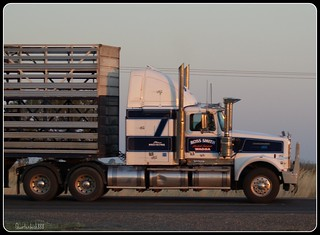 Ross Smith  Western Star | by quarterdeck888