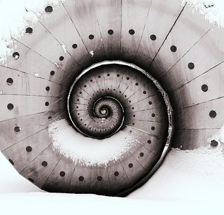 Winter Snail | by MTB1975