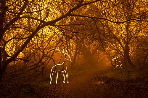 Light Harted (Reindeer Light Painting), Hertfordshire | by flatworldsedge