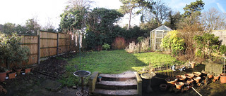 Our Garden - January 2011 | by psc631798uk's Trans-tography