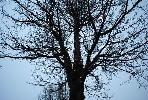 Victoria winters nude Nude Photos 85