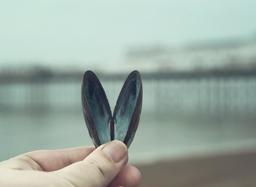 My heart belongs to the sea | by Andreas-photography