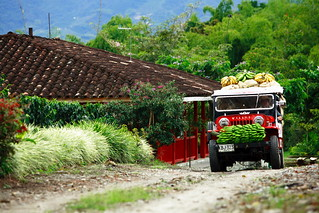 Jeep carrying bananas in the Coffee Zone, Colombia | by Exodus Travels - Reset your compass