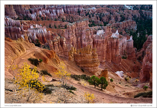 A Touch of Fall at Bryce | by Suprada
