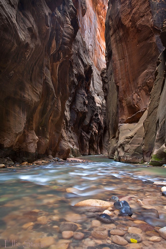 "Natures Wallstreet ""Zion National Park UT"" 