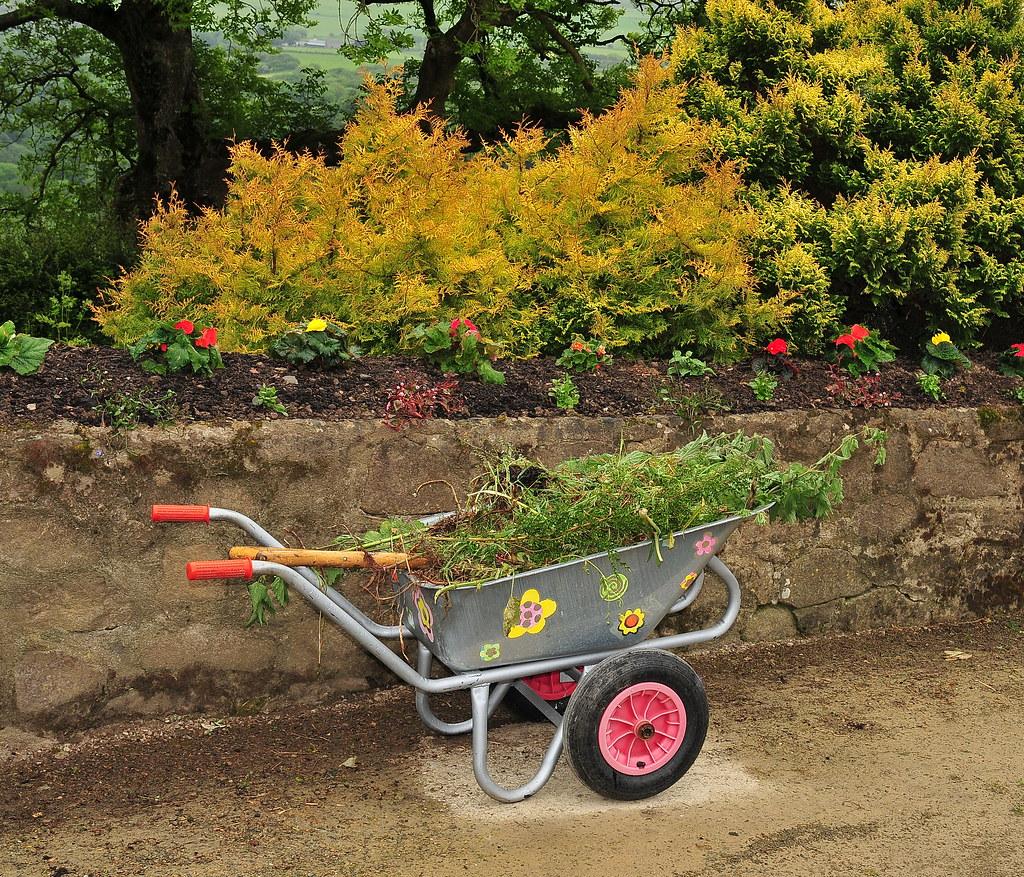 Pink Wheels | Work in progress in Welsh Garden. DSC 9256F | Bradclin ...