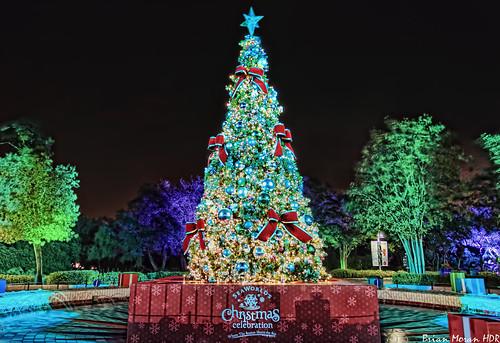 Christmas Tree At Sea World San Antonio In San Antonio, Te
