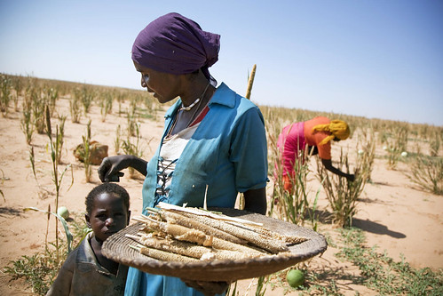 Peacekeepers Protect Women in Rural Areas of Darfur | by United Nations Photo