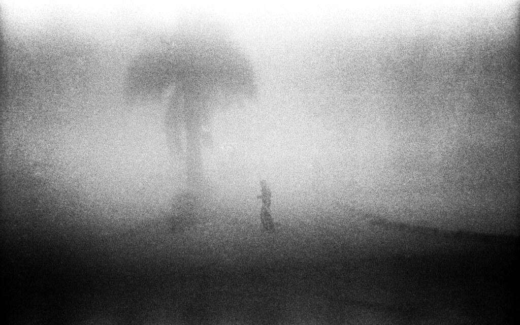 Morning, Santiago, 1994 | by Marcelo  Montecino