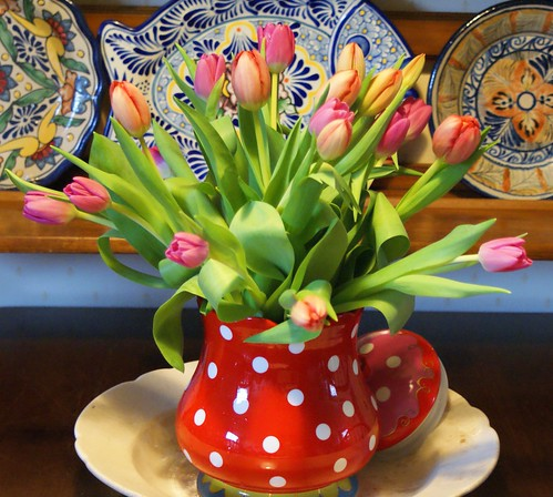 tulips and polka dots | by dutch blue