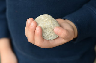 Petoskey Stone | by learning as I go