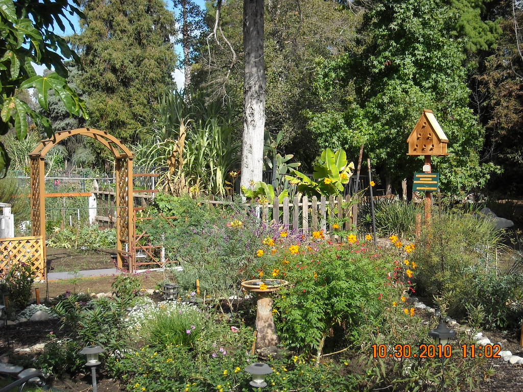 Merveilleux ... Southern California Butterfly Garden Dedication | By National Garden  Clubs