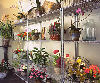 Flowers and plants display | by Bin-Store.com
