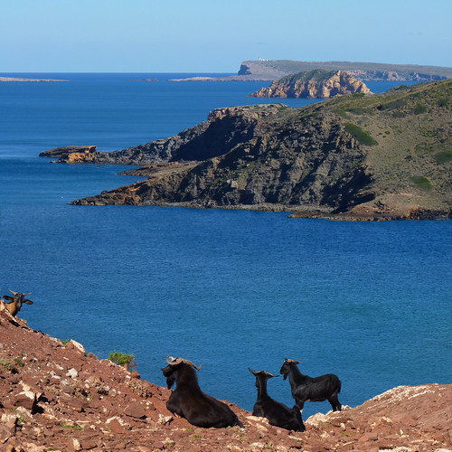 A Goat's View of rocky coastline of Menorca | by B℮n