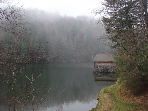 Lake Julia Dupont State Forest North Carolina Lake