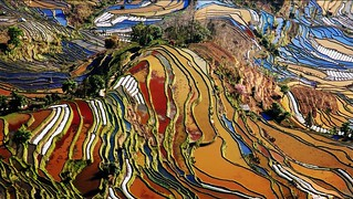 Yuanyang Rice Terraces  - China's Perfect Palette    云南元阳梯田 - 中国的绝美调色板 | by Meiguoxing