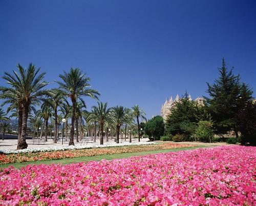 Jardines del parc de la mar palma de mallorca pc 1070 for Apart hotel jardin del mar la serena