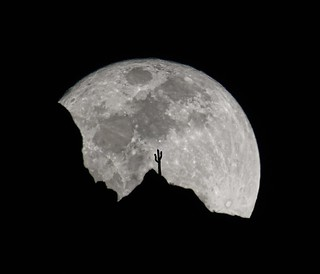 Super Moon | by chris_crssd