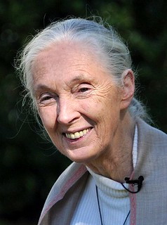 Jane Goodall | by nick step