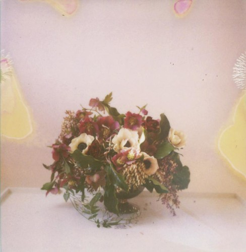 new flowers and old film | by danske