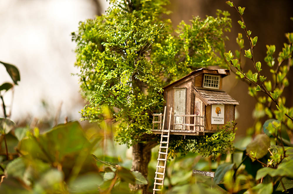 Miniature Tree House treehouse mini in the park | michael caccavano | flickr