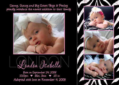 zebra pink baby girl adoption birth announcement zebra pin flickr