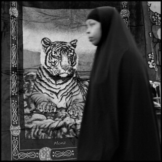 Bengal Tiger vs Hijabi Lady | by *monz*