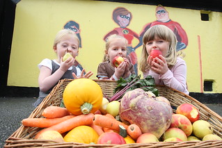 Healthy Food for All: Ireland | by Food Ethics Council