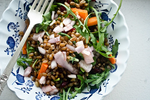 Wheat Berry Citrus Salad 2 (1 of 1) | by bell.ab