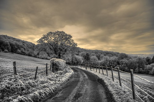 A frosty morn' | by Mike Dorey