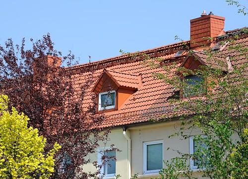 2908 dachfenster zwischen b umen und str uchern gartenst flickr. Black Bedroom Furniture Sets. Home Design Ideas