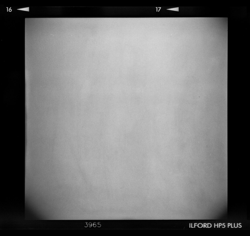 holga film texture by kaletaylorphotography holga film texture by kaletaylorphotography