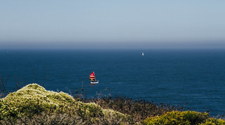 Sailboats | Lands End, San Francisco | by THEMACGIRL*