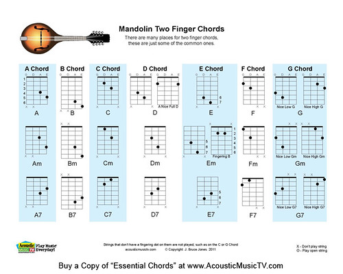 Essential Chords For Guitar Mandolin Ukulele Banjo Book Flickr