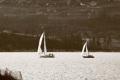 March Sailing 3 | by LongInt57