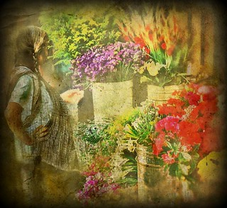 the flower market | by MouradianR :)