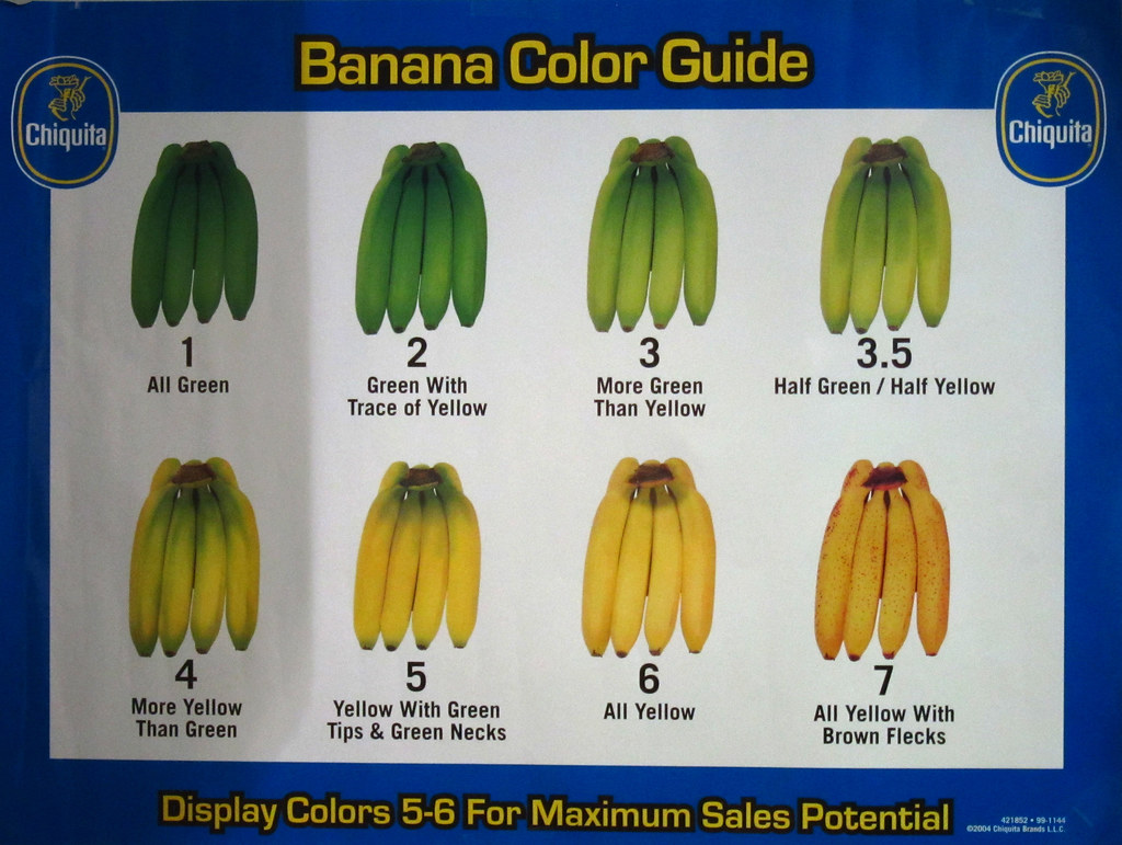 Image result for banana guide