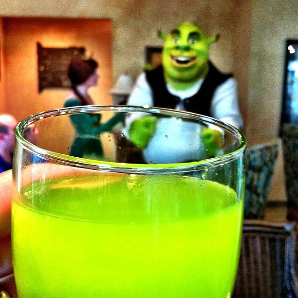 drinking swamp juice gaylordpalms shrek littlelostrobot flickr