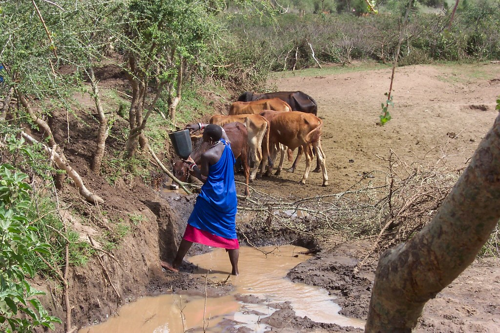 NWI Control of Water Borne Diseases in Lorngosua - Kenya | Flickr