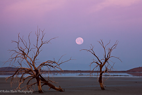 Supermoon moonset, Salton Sea | by Robin Black Photography