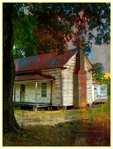 Abandoned Tenant House:  Nash County, North Carolina | by EdgecombePlanter
